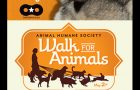 2016 Our 5TH Year At The WALK FOR ANIMALS
